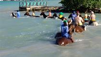 Horse Back Ride and Swim from Falmouth Cruise Port, Falmouth, 4WD, ATV & Off-Road Tours
