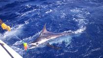 Private Big Game Fishing Excursion in St Lucia, St Lucia, Private Sightseeing Tours