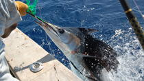 St Lucia Sports Fishing Adventure, St Lucia, Day Cruises