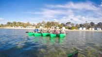 Half-Day Guided Kayak Tour of Capel Sound from Rosebud West, Mornington Peninsula, Kayaking & ...