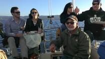 Monterey Bay Sunset Appetizer Cruise