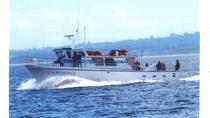Motor Vessel Cruises for Private Large Parties, Monterey & Carmel, Private Day Trips