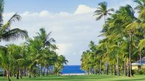 Nevis Plantation and Beach Experience from St Kitts, St Kitts