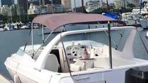 Private Morning Boat Photo Tour in Rio de Janeiro, Rio de Janeiro, Private Sightseeing Tours