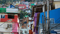 Private Tour: Santa Marta Favela with a Professional Photographer, Rio de Janeiro, Private ...