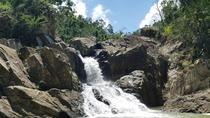 El Yunque National Forest an Cave Tour from San Juan, San Juan, Day Trips