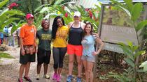 El Yunque Rainforest Adventure from San Juan, San Juan, Hiking & Camping