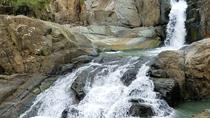 El Yunque Rainforest and Pinones Beach Tour, Puerto Rico, Cultural Tours