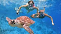 Fishing and Snorkeling Full-day Boat Trip with Lunch and Drinks, Alanya
