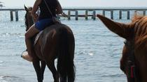 Horseback riding in Bodrum, Bodrum, Horseback Riding
