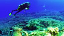 Scuba Diving for Beginners in Alanya, Alanya
