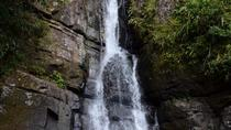 El Yunque Rain Forest Nature Walk and Bioluminescent Bay Kayaking Combo Tour, San Juan, null