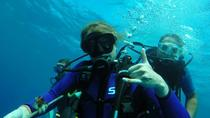 Introductory Dives, Oahu, Scuba Diving