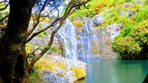 Hiking in Mauritius: Tamarind Falls (7 Cascades) With Hotel Transfer & Guide, Port Louis, Hiking &...