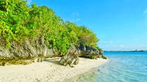 Ile aux Aigrettes Nature Reserve Tour, Including Blue Bay Beach & Mahébourg, Port Louis, Day Trips