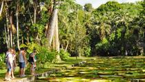 Mauritius In 3 Days: North, South & Southwest Tours & Optional Dolphin Wild Swim, Grand Baie,...