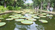 Mauritius Private North Day Tour: Botanical Garden - Sugar Museum - Rum Tasting - Port Louis, ポート ...