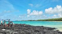 Private Full Day Customizable Mauritius Tour with Chauffeur, Grand Baie, Cultural Tours