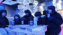 Dubai's Chillout Ice Lounge, Dubai, null