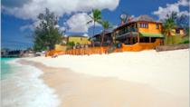 Nassau Shore Excursion: Bob Marley Resort with transfers & lunch, Nassau, Ports of Call Tours
