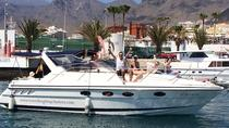 Luxury motor boat cruise with whale and dolphin watching, Tenerife, Day Cruises