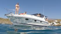 Whale and Dolphin Watching Private Motor Boat Half Day Charter, Tenerife, Boat Rental