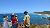 Margaret River Coastal and Wildlife Eco Trip from Busselton or Dunsborough, Margaret River