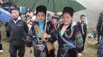 3-Night Can Cau and Bac Ha Market Tour, Hanoi, Multi-day Rail Tours