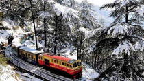 6 Days Amritsar Chandigarh and Shimla Toy Train Tour with Flights from Delhi, Shimla, Multi-day...