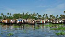 6-tägige private Tour: Periyar-Naturschutzgebiet und Backwaters-Hausboottour in Kerala, Kochi, ...