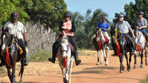 Evening Horse Riding Experience in the Countryside, Udaipur, Theater, Shows & Musicals
