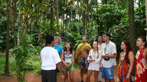 Full day Spice Plantation Tour with Lunch and Visit to Temples, Goa, Plantation Tours