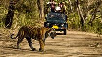 Jungle Safari in Rajaji National Park with Private Transfers, Rishikesh, Attraction Tickets