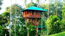Private 4 days Kerala Tour with Stay at Tree house and Backwater Houseboat, Kochi, Multi-day Tours