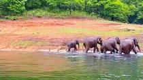 Private 5 Days Fabulous Kerala Tour from Coimbatore, Coimbatore, Cultural Tours