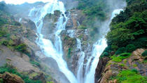 Private Full day Trip to Dudhsagar Falls with Lunch and Spice Plantation, Goa, Plantation Tours