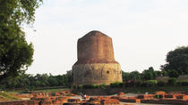 Private Tour: Sarnath Day Tour including Sarnath Museum, Varanasi, Private Day Trips
