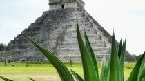Coba and Chichen Itza Private Tour with Lunch, Cenote Ik Kil, Tulum, Day Trips
