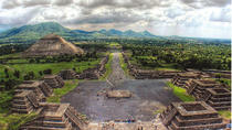 Mexico City Private Tour with Teotihuacan, Murals, Guadalupe Basilica, Mexico City, Walking Tours