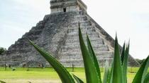 Private Day Trip: Ek Balam and Chichen Itza with Cenote and Tequila Factory, Playa del Carmen, ...
