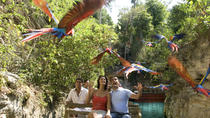 Private Tour Coba and Night Show in the Park Xcaret, Cancun, Private Sightseeing Tours