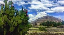 Teotihuacan and Tula Private Archeology Tour from Mexico City, Mexico City, Private Sightseeing ...