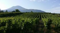 Wine Tour and Lunch with Winetasting and Vineyard Visit, Naples, Wine Tasting & Winery Tours