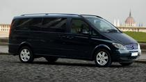 Moscow SVO Airport Luxury Van Private Arrival Transfer, Moskva