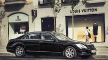 Private Arrival Transfer in Business Car from Brussels Railway Station to Hotel , Brussels, Airport...