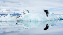Glacier Lagoon South Coast Private 4X4 Jeep Tour from Reykjavik, Reykjavik, Private Sightseeing ...