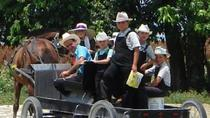 Maya Village and Mennonites of Barton Creek Cultural Tour, San Ignacio, Day Trips