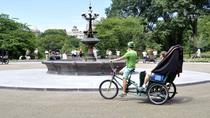 Visites de Central Park en vélotaxi, New York City, Private Sightseeing Tours
