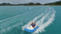 Shore Excursion - Antigua Reef Riders Self-Drive Boat and Snorkeling Tour, St John's, Ports of ...