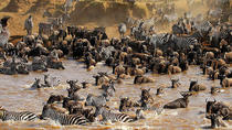 12 Days Kenya and Tanzania Wildlife Safari, Nairobi, Cultural Tours